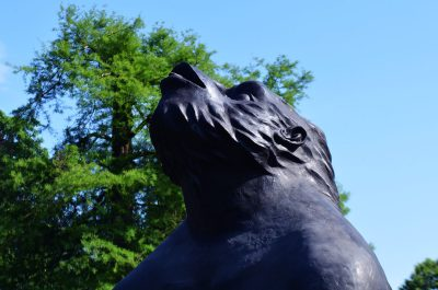 NordArt Blog-Auiswahl